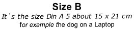 Size B It`s the size Din A 5 about 15 x 21 cm for example the dog on a Laptop